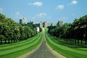 Windsor Castle Longshot