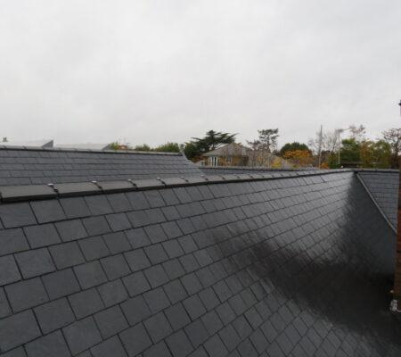 Educational Roofing in Merton